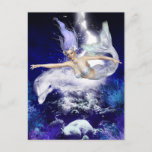 Mermaid with Dolphin Postcard