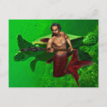 Merman with Sea Turtle Postcard
