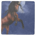 Moonlit Unicorn Stone Coaster